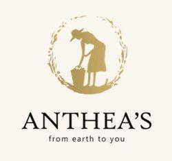 KEA: ANTHEA ΙΚΕ